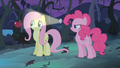 Pinkie Pie showing light at Fluttershy S04E07
