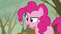 Pinkie Pie in Tanks for the Memories S5E5