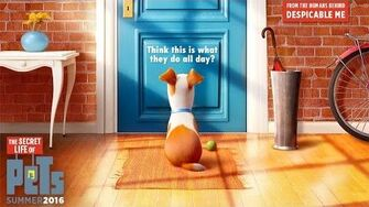 The_Secret_Life_Of_Pets_-_Official_Teaser_Trailer_(HD)_-_Illumination