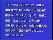 Disney Japanese Warning Screen (1989)