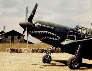P-51B Mustang, China 1944.jpg