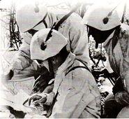 Italian Alpini Officers reviewing their maps, Circa January 1943, possibly Nikolayevka