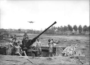 Milne Bay AA Battery, 1942.jpg
