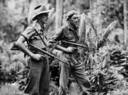 Australian infantry on patrol in the jungle of New Britain, April 4 1945