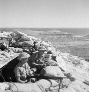 Bren gun team of the Leicestershire regiment, Tobruk, November 10, 1941