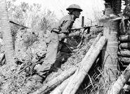 Australian soldier of 2-43rd Battalion at Labuan bay, June 10 1945