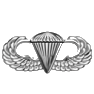 Paratrooper Wings Award