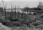 German positions in a destroyed forest of Westerplatte, September 8, 1939