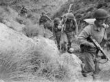 1943 British Infantry Battalion Organization