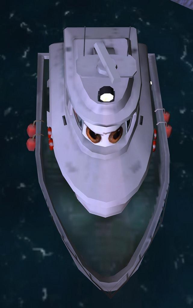 The Japanese Coast Guard