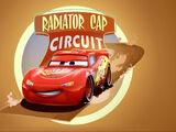 Radiator Cap Circuit