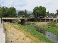 Tronco creek Mostazal 006
