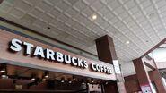 Starbuck G0176