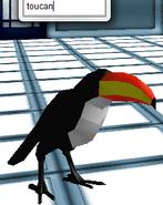 Avatar- Toucan