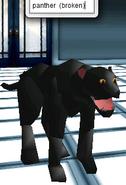 Avatar- Panther