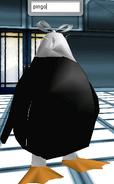 Avatar- Pingo