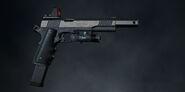 Pistol Lv 5 Alternate