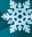 Silver Snowflake avatar