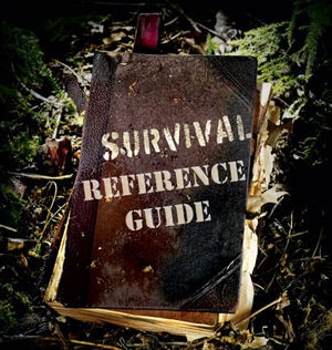 Survival-book-cover.jpg