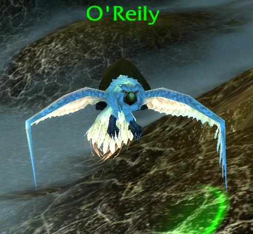 O'Reily