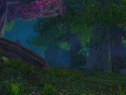 Nightsong Woods.jpg