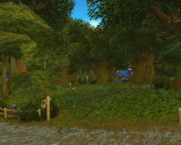 Wald von Elwynn