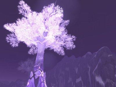 Forêt du Chant de cristal