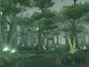 Forêt de Terokkar.jpg