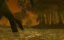 Swamp of Sorrows.jpg