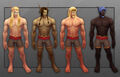 SL Blood Elf customization male