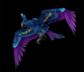 HyacinthMacaw.png
