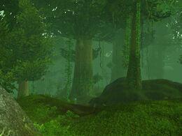 High Wilderness.jpg