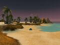 Wavestrider Beach.jpg