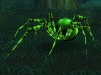 Image of Green Recluse