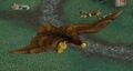 Duskwing Eagle2.jpg