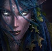 Warcraft III Box - Tyrande.jpg