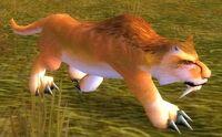 Image of Flatland Cougar