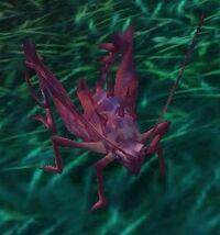 Image of Grassland Hopper