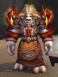 Image of Honorbound Elementalist