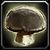 Inv mushroom 13.png