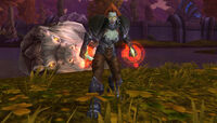 Image of Grom'kar Shadowblade