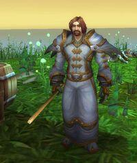 Image of Alliance Priest