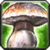 Spell druid wildmushroom.png