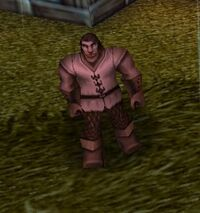Warcraft III - Acolyte in Hiding.jpg