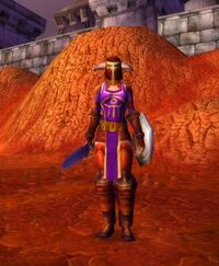 Image of Nethergarde Soldier