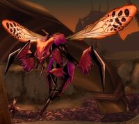 Image of Hive'Regal Spitfire
