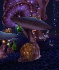 Image of Healthy Mushroom