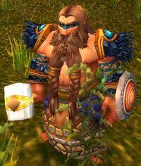 Image of Wildhammer Shaman