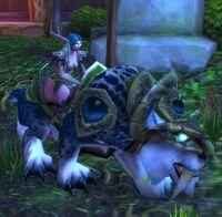 Image of Darnassian Huntress