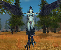 Image of Witchwing Harpy